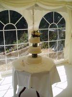 Cómo hacer un pastel de bodas de la esponja