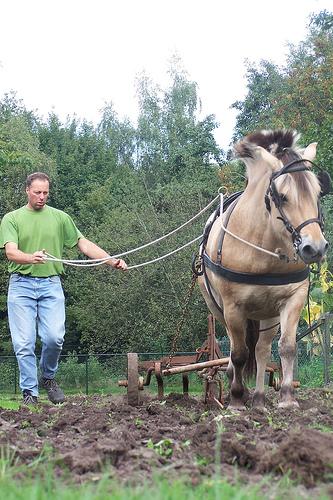 Fórmula eléctrica para los caballos de fuerza