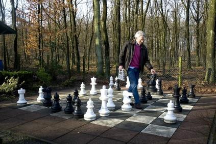 Cómo construir conjuntos de ajedrez Yard