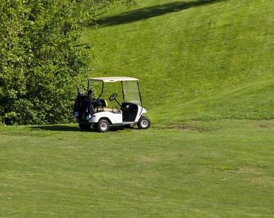 Cómo encontrar el año y modelo del club de coches carros de golf