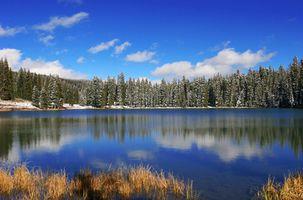Lugares para tener una boda en Colorado