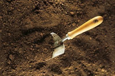 Un proyecto de la ciencia: el muestreo de suelos para los microorganismos