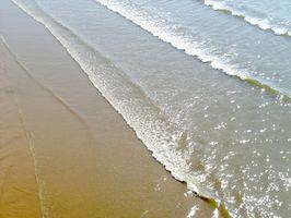 Cómo leer las mareas en Florida