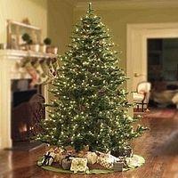 Cómo mantener su árbol de Navidad vivos