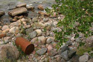 Proyecto de Ciencias de la contaminación de agua dulce