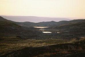 Similitudes entre el desierto y la tundra Biomas Biomas