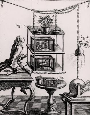 Cómo reproducir este 18 de muebles del siglo