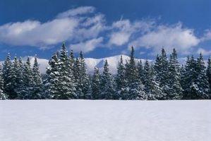Datos acerca de las condiciones climáticas en Mount Washington
