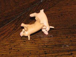 Reglas para Pass the Pigs