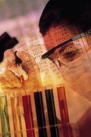 Papel de cromatografía proyectos de la ciencia con una hipótesis