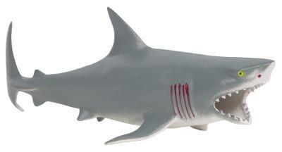 Cómo Excavar en busca de dientes de tiburón
