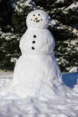 Cosas divertidas para hacer durante una tormenta de nieve