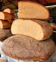 Los experimentos con moho en el pan
