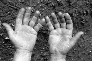 ¿Cómo funciona el agotamiento del suelo afecta el ecosistema?