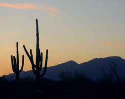 Viajes Diversión y día libre de la familia en Arizona