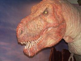 Juegos de dinosaurios para niños pequeños