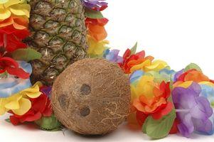 Ideas para una fiesta de cumpleaños tropical