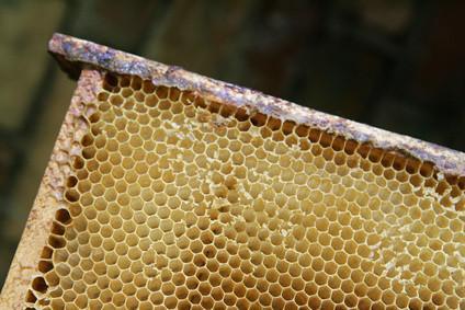 ¿Cómo se hace la cera de abejas?