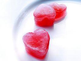 Regalos lindos del día de San Valentín para los individuos