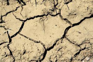 Contenido de humedad y suelos Análisis