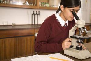 Forma de guardar un microscopio compuesto después de su uso