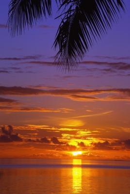 Las ideas del libro de recuerdos isla tropical
