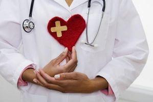 Ideas para la cesta de regalo con los objetos saludables para el corazón