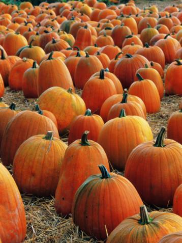 Condado de Fairfield, Ohio actividades de Halloween