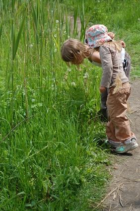 Juegos de aprendizaje al aire libre para los niños