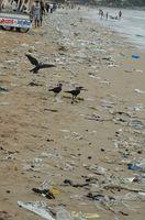 Los principales contaminantes del mar