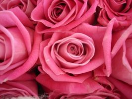 Regalos del aniversario para los años de matrimonio