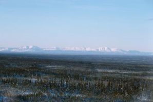 Descripción de los factores abióticos en la tundra