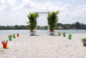 Cómo planificar una boda de playa en Texas