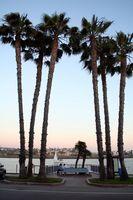 Lugares para casarse en el norte de California