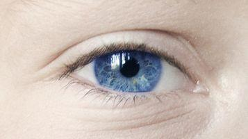 Componentes del ojo