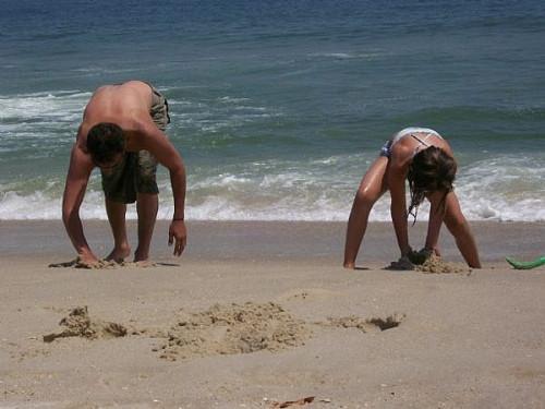 Cómo coger un cangrejo de la arena