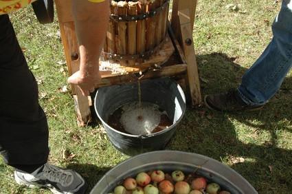 Cómo hacer vino espumoso Fuera de la sidra de Apple