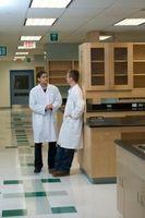 Los experimentos de laboratorio de biología de la universidad