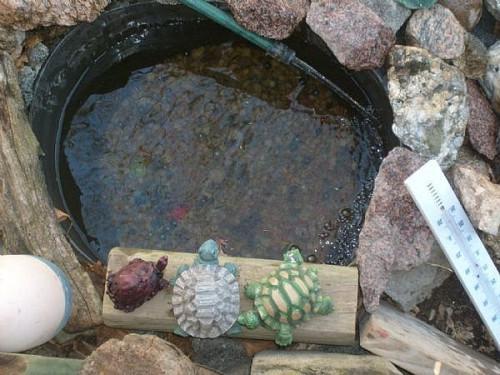 Cómo configurar un estanque de peces de jardín (por barato!)