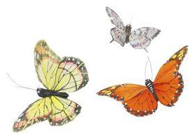 Jaulas mariposa hechas en casa para niños