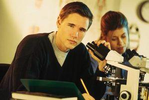 Cómo tener éxito en Microbiología