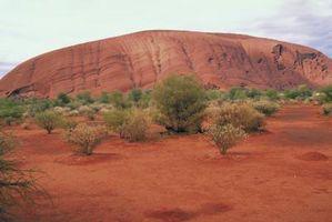 Datos curiosos sobre el clima del desierto