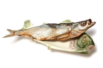 Herramientas para la medición de los pescados