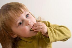 ¿Cómo puedo hacer un plan semanal de comidas para un comedor infantil Picky?