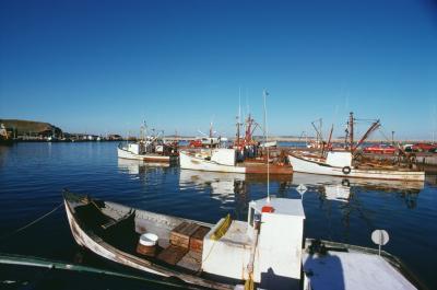 ¿Cómo los remolcadores Steer río barcazas?