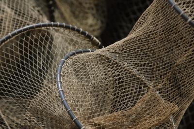 Cómo capturar peces como un proyecto agrícola