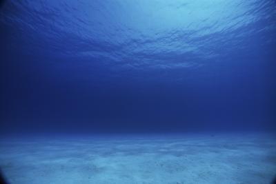 Density Projects océano para el primer grado