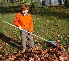 Cómo recaudar dinero en la niñez