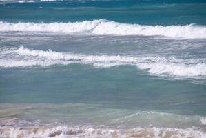 La elasticidad y densidad de la velocidad de una onda