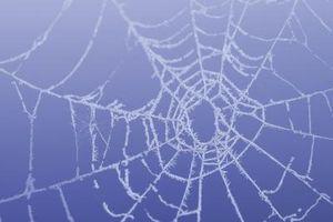 Cómo hacer una tela de araña de una carrera de obstáculos